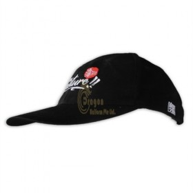 HA316    Hong Kong Baseball Cap supplier